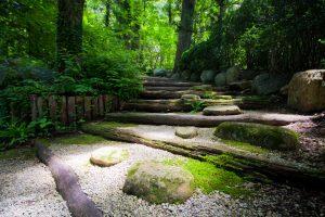 Achtsamkeit und Mediation bei Yoga Samiti Überlingen