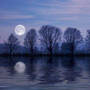 full-moon-landscape-klein
